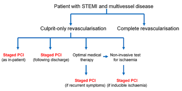 Revascularisation strategies for ST-segment-elevation myocardial infarction (STEMI) patients with multivessel disease. PCI indicated percutaneous coronary intervention [taken  with permission from reference number 6].