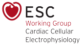 Working Group on Cardiac Cellular Electrophysiology