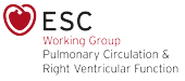 ESC Working Group on Pulmonary Circulation & Right Ventricular Function