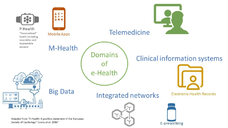 Figure 1. Domains of e-Health