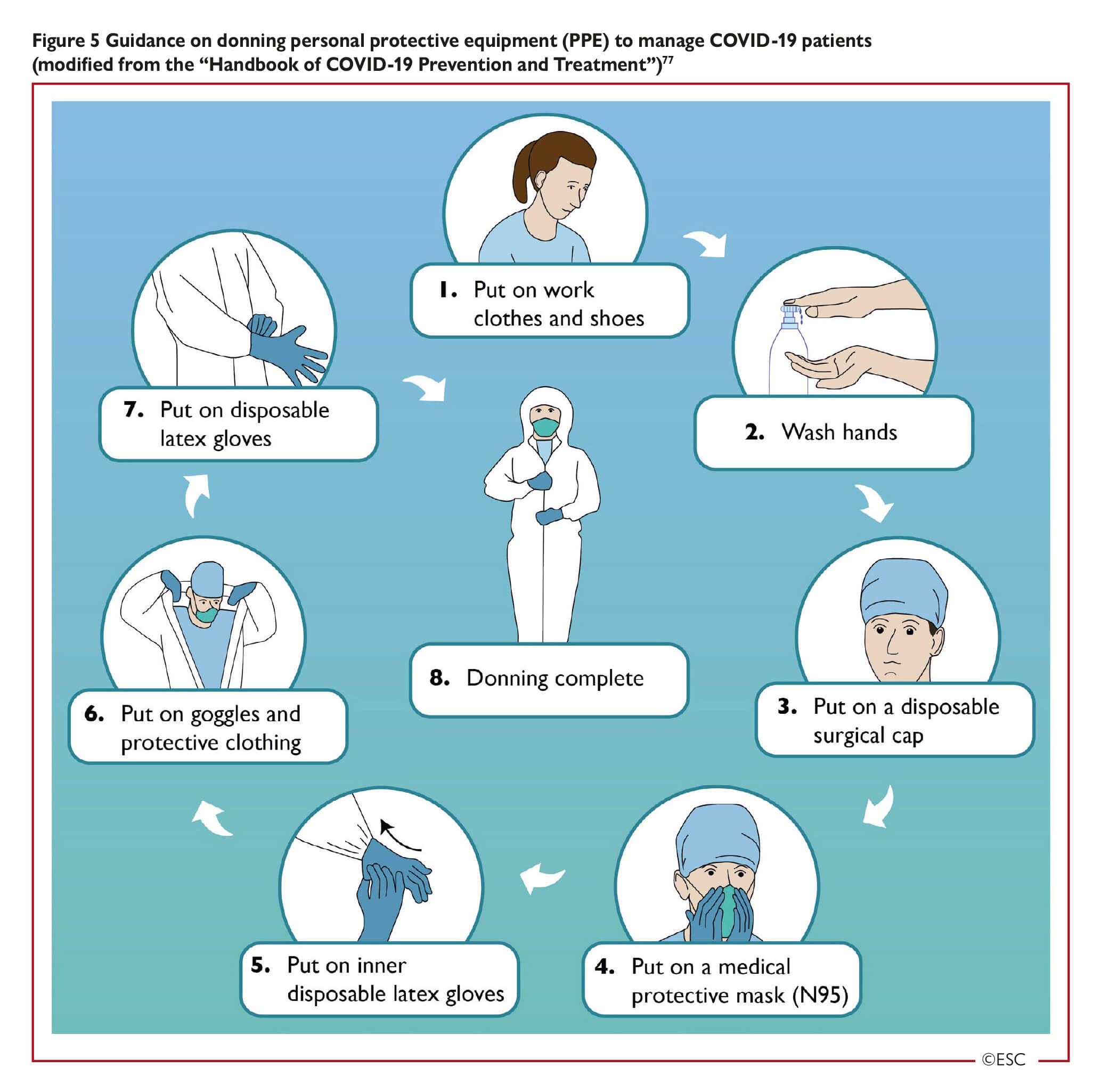 Esc Guidance For The Diagnosis And Management Of Cv Disease During The Covid 19 Pandemic A coronavirus is a common virus that causes an infection in your nose, sinuses, or upper throat. esc guidance for the diagnosis and