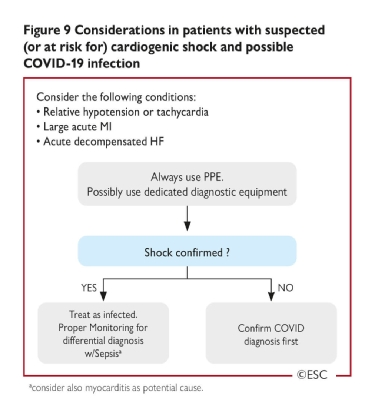 <b>Figure 9</b> Considerations in patients with suspected (or at risk for) cardiogenic shock and possible COVID-19 infection