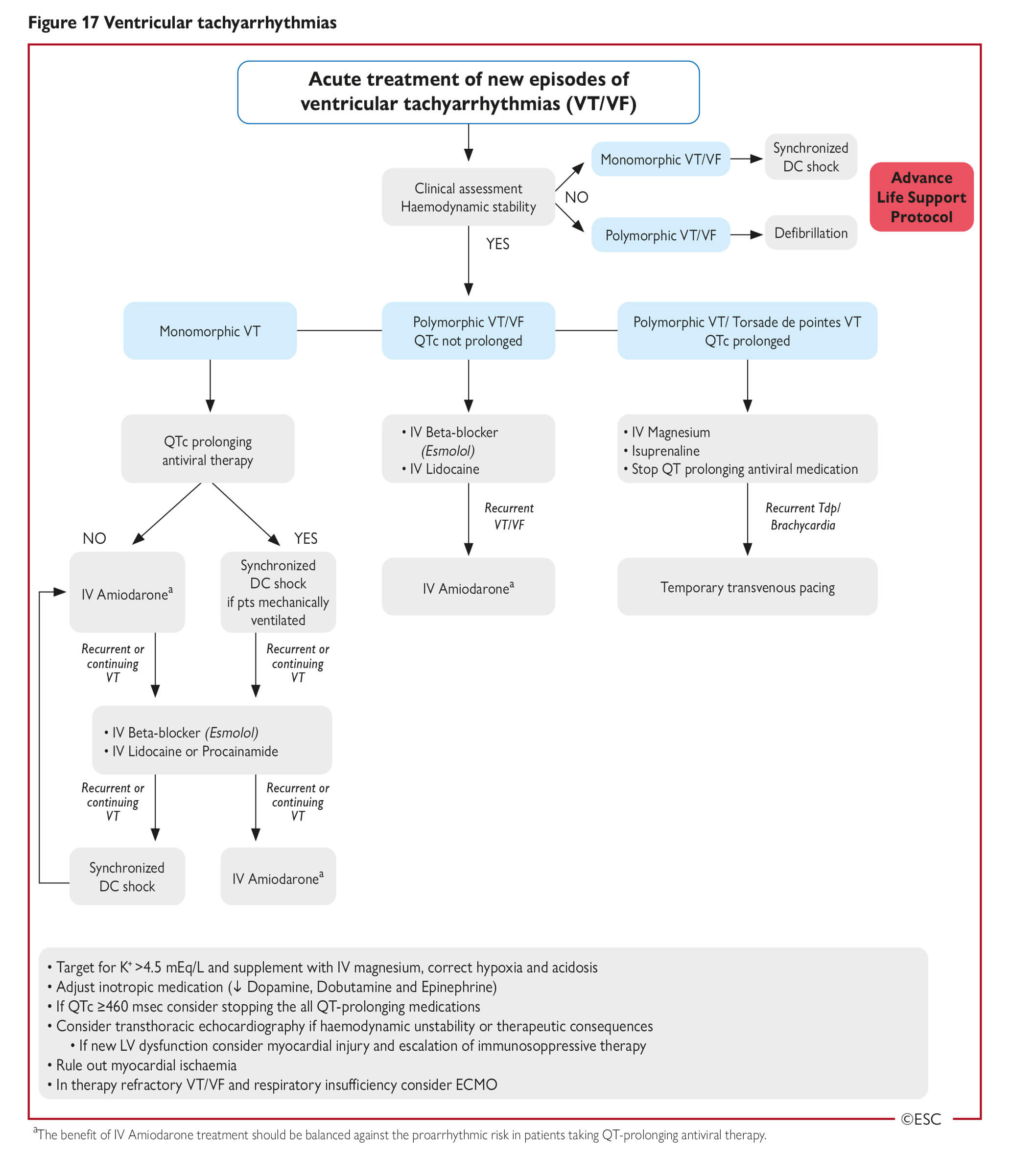 Esc Guidance For The Diagnosis And Management Of Cv Disease During