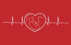 Participate in the Registry Of Pregnancy And Cardiac disease (ROPAC)