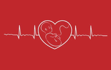 Registry of Pregnancy & Cardiac Disease