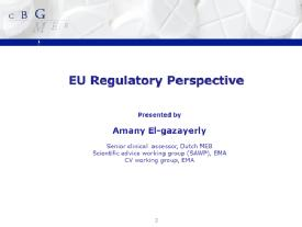 Comments on the guidelines from Regulatory Agencies - A. El Gazayerly