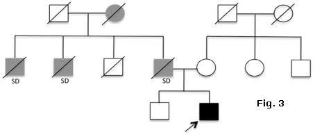 Fig 3: Family history and evaluation