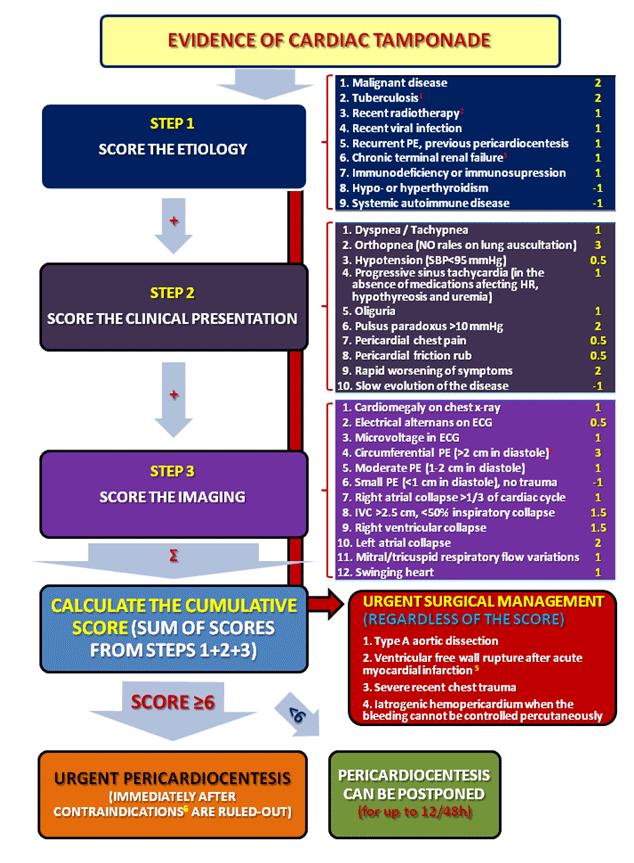 иммунология учебно методический комплекс