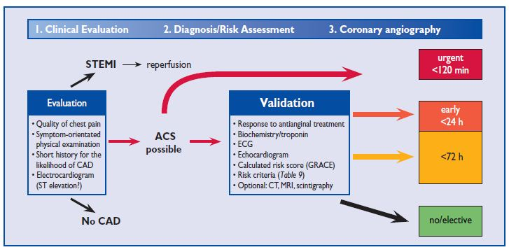 Figure 2 Decision-making algorithm in ACS